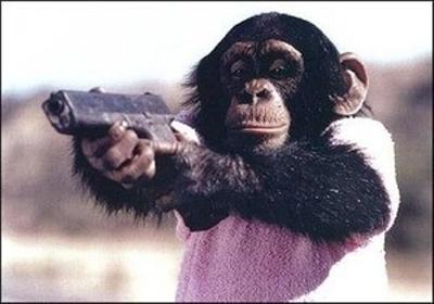 パン 処分 殺 チンパンジー くん