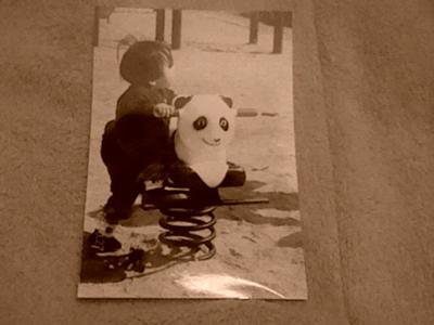 ああ、そうそう、20年前は、よくおじいちゃんと上野動物園へいって ...